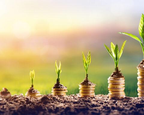 ESG e o Design Estratégico